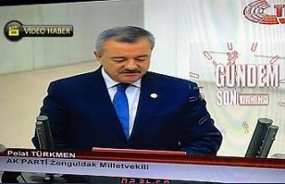 Türkmen TBMM'de yemin etti