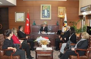Vali Çınar'ı ziyaret ettiler