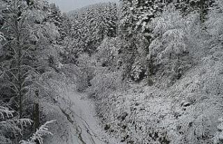 Karabük - Bartın karayolunda kar yağışı etkili...