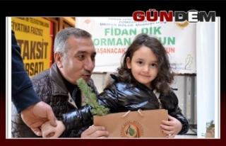 2019 YILINA 2019 FİDAN!..