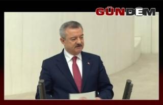 Türkmen Sarıkamış Şehitlerini andı