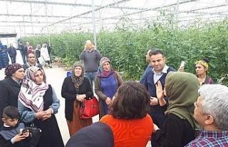 Devrekli çiftçilerden Antalya gezisi