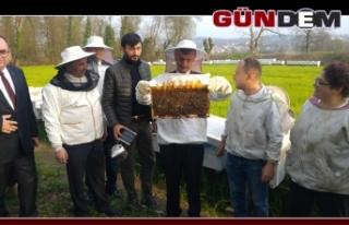 Vali Bektaş, Çaycuma'da tarım ve hayvancılık...