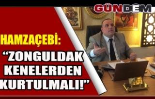 """HAMZAÇEBİ: """"ZONGULDAK KENELERDEN KURTULMALI!"""""""