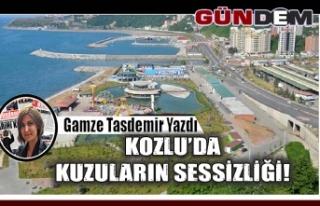 KOZLU'DA KUZULARIN SESSİZLİĞİ!