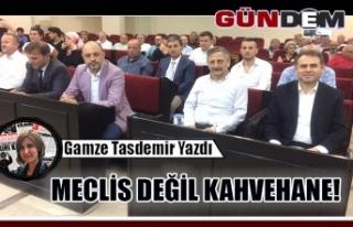 MECLİS DEĞİL KAHVEHANE!