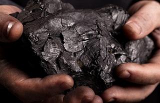 Zehirli kömür iddilarına yanıt geldi!