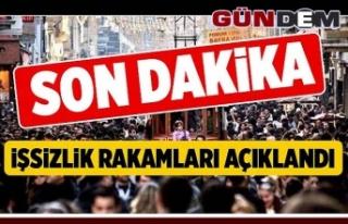 2019 Mayıs İşsizlik Rakamları Açıklandı!...