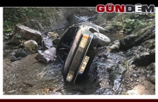Otomobil dereye uçtu; 2 yaralı
