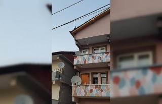 3 katlı evin çatısına çıkan tavuk kuş gibi...