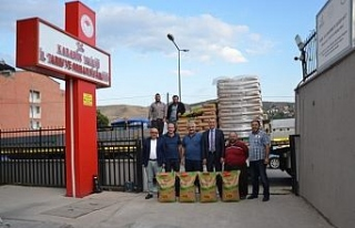 Çiftçilere 380 ton sertifikalı tohumluk dağıtıldı