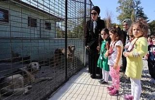 Minik öğrencilerden sokak hayvanlarına mama