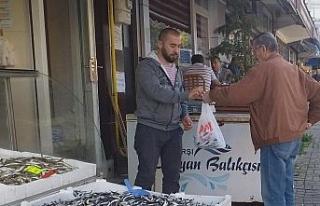 Hamsi fiyatı Karadeniz'de 7 TL'ye düştü...