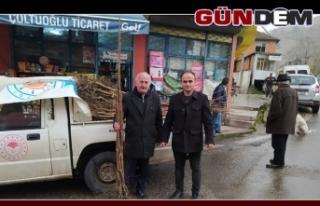 Çiftçilere Trabzon Hurması fidanı verildi...