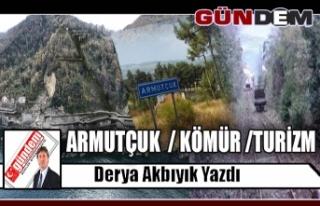 ARMUTÇUK / KÖMÜR /TURİZM