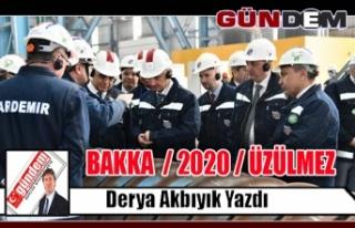 BAKKA  / 2020 / ÜZÜLMEZ