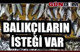 Balıkçıların isteği var