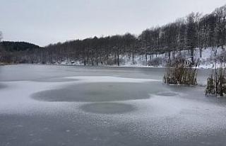 Göktepe Göleti buz tutu