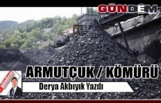 ARMUTÇUK / KÖMÜRÜ