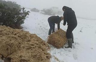 Mart karı ekipleri hareketlendirdi