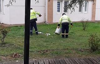 Park ve bahçelerin temizliği yapıldı