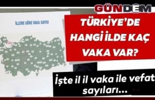 Türkiye'de illere göre vaka sayıları ve can...