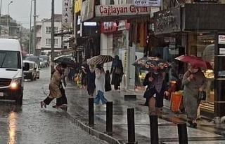 Sağanak yağış Düzce'de etkili oldu