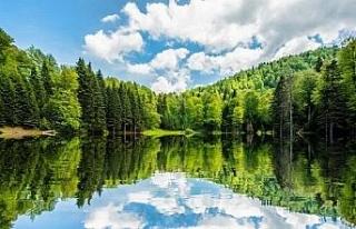 Torkul Yaylası muhteşem güzelliği ile havadan...