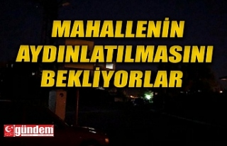 ALAPLILI VATANDAŞ MAHALLELERİNİN AYDINLATILMASINI...