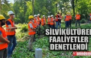 ZONGULDAK'TA SİLVİKÜLTÜREL FAALİYETLER DENETLENDİ