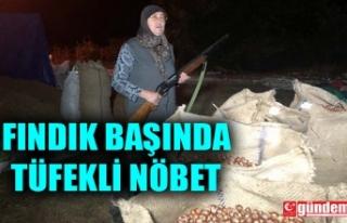 FINDIK ÜRETİCİLERİ HIRSIZLIĞA KARŞI TÜFEKLE...