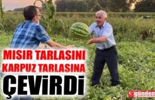 MISIR TARLASINI KARPUZ TARLASINA ÇEVİRDİ
