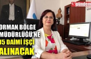 ORMAN BÖLGE MÜDÜRLÜĞÜ'NE 15 DAİMİ İŞÇİ...