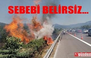 YOL KENARINDAKİ KURU OTLAR YANMAYA BAŞLADI, İTFAİYE...