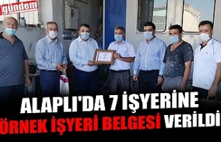 ALAPLI'DA 7 İŞYERİNE ÖRNEK İŞYERİ BELGESİ...