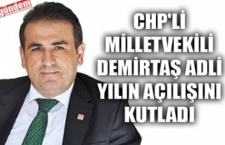 CHP'Lİ MİLLETVEKİLİ DEMİRTAŞ ADLİ YILIN...