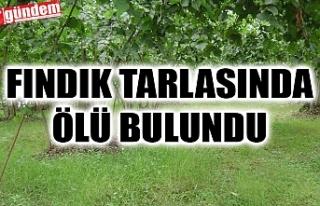 FINDIK TARLASINDA CANSIZ BEDENİ BULUNDU