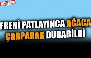 FRENİ PATLAYINCA AĞACA ÇARPARAK DURABİLDİ