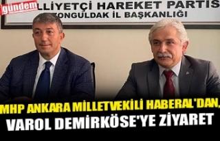 MHP ANKARA MİLLETVEKİLİ HABERAL'DAN, VAROL...