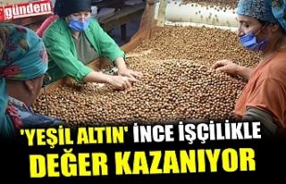 'YEŞİL ALTIN' İNCE İŞÇİLİKLE DEĞER...