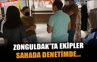 ZONGULDAK'TA EKİPLER SAHADA DENETİMDE...