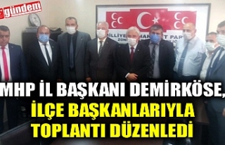 MHP İL BAŞKANI DEMİRKÖSE, İLÇE BAŞKANLARIYLA...