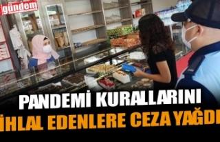 PANDEMİ KURALLARINI İHLAL EDENLERE CEZA YAĞDI