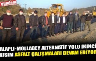 ALAPLI-MOLLABEY ALTERNATİF YOLU İKİNCİ KISIM ASFALT...