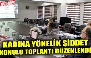 KADINA YÖNELİK ŞİDDET KONULU TOPLANTI DÜZENLENDİ