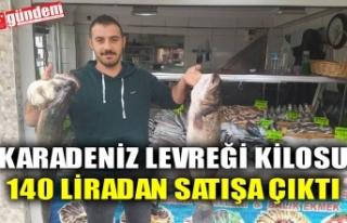 KARADENİZ LEVREĞİ KİLOSU 140 LİRADAN SATIŞA...