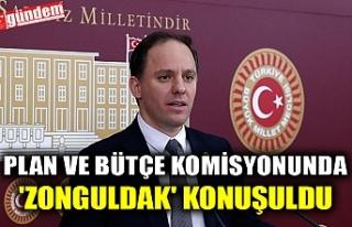 PLAN VE BÜTÇE KOMİSYONUNDA 'ZONGULDAK'...