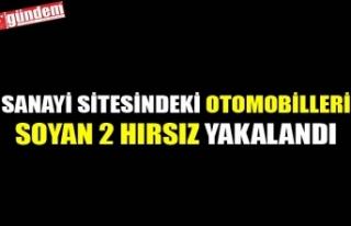 SANAYİ SİTESİNDEKİ OTOMOBİLLERİ SOYAN 2 HIRSIZ...