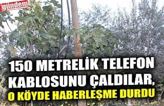150 METRELİK TELEFON KABLOSUNU ÇALDILAR, O KÖYDE...