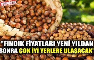 """FINDIK FİYATLARI YENİ YILDAN SONRA ÇOK İYİ..."